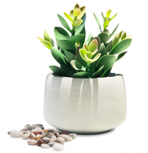 Artificial succulent in a pot