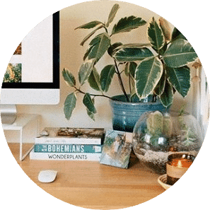 Pot plant on a desk with books, a candle, and a terrarium