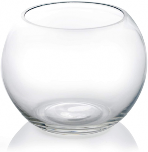Hand-blown glass fish bowl terrarium