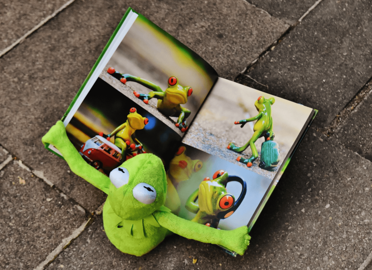 Kermit the frog with a graphic design portfolio