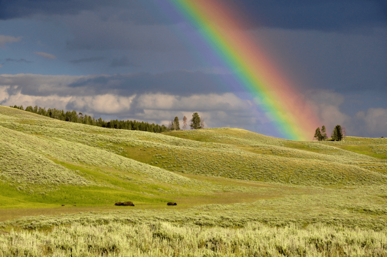 Rainbow over a landscape